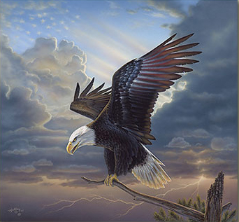 "image ""the patriot"" by Rick Kelley"